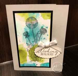 What do these two Stampin' Up! cards have in common??