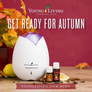 October 15 Featured Products