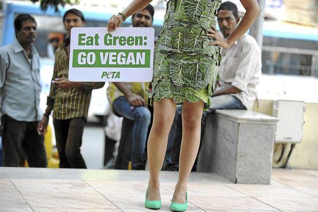 No Longer Weird to be a Vegan!