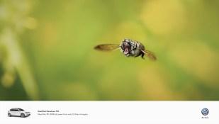 volkswagen-golf-jetta-polo-small-but-ferocious-print-369998-adeevee