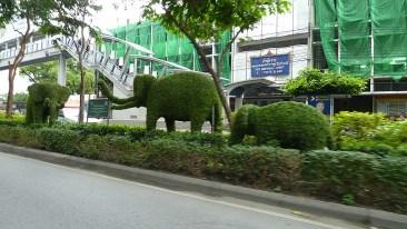 Thanon Rama I landscaping