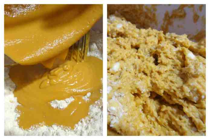 Sweet Potato Biscuits 9
