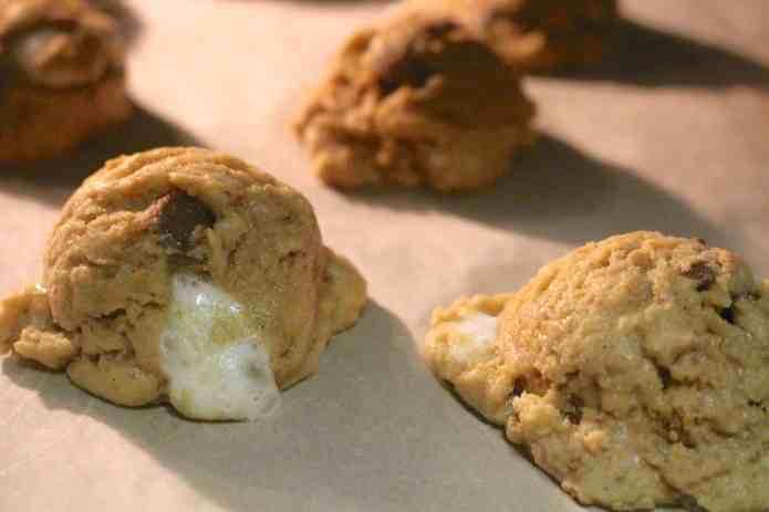 Campfire Cookies - 15
