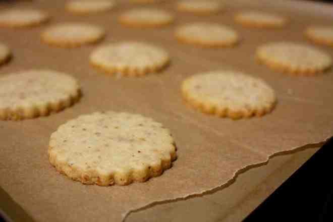 WTF Cookies - 11