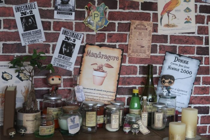 Décoration fête d'anniversaire Harry Potter. Mandragore Harry Potter, cours de potions anniversaire Harry Potter
