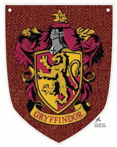 Organiser Un Anniversaire Harry Potter Idées Scénario