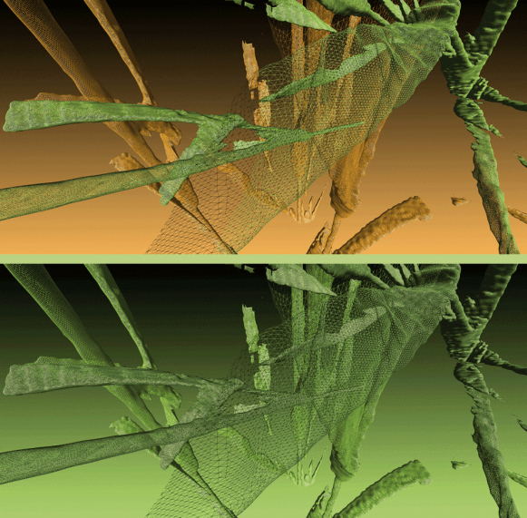 Image: 'Snapshots of Wheat Plants' by Eleanor Gates-Stuart (Data by Helen Daily & Jianming Guo)