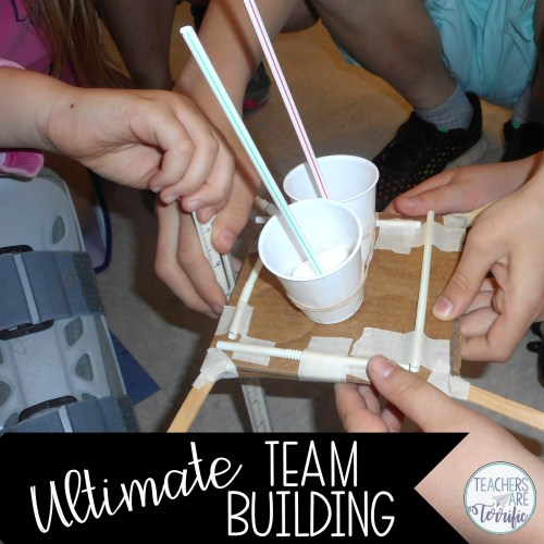 Students working together in STEM Class is the ultimate in showing teamwork!