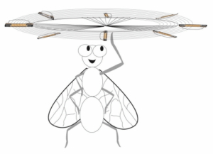 drawing of bug twirling a buzz off