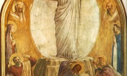 Transfiguration (1)