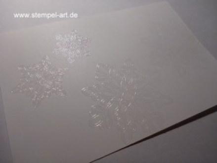 Tolle Technik nach StempelART, Embossing resist, bebilderte Anleitung, Tutorial, Stampin up, Flockenzauber (7)