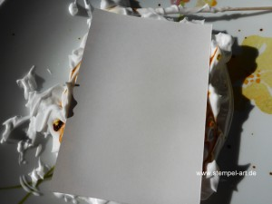 Rasierschaumtechnik nach StempelART, Stampin up, bebilderte Anleitung, Tutorial, Tolle Technik!!!, Nachfülltinte, marmoriertes Papier