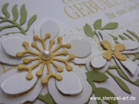 Botanischer Garten nach StempelART, Stampin up, Botanical Blooms, Pflanzen Potpourri, Geburtstagsgrüße für alle, Timeless Textures