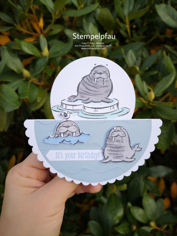 Walross Stampin' Up! Geburtstagskarte Stempelpfau
