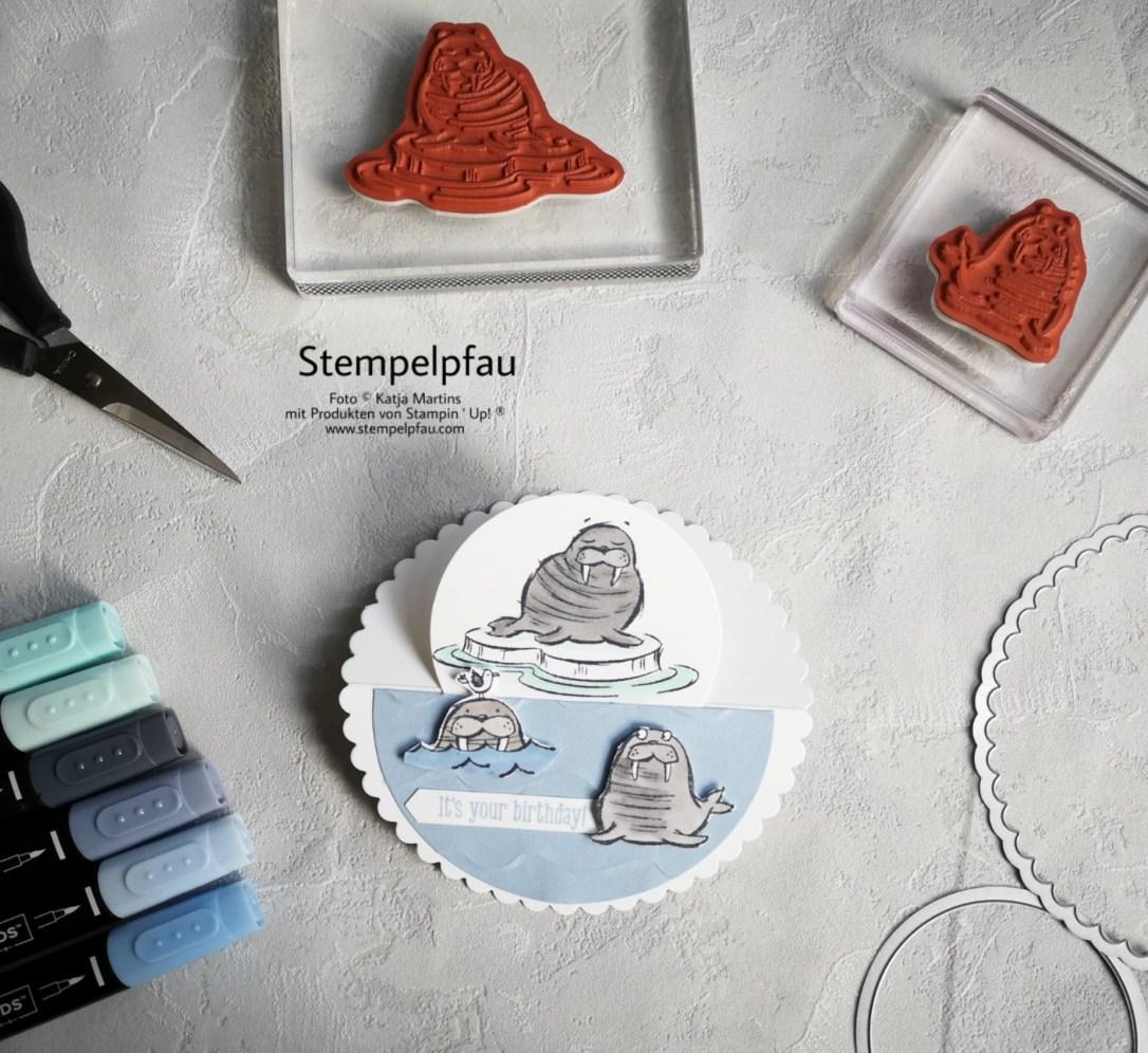 Walross Stampin' Up! Geburtstagskarte Stempelpfau Kreise Stampin Blends