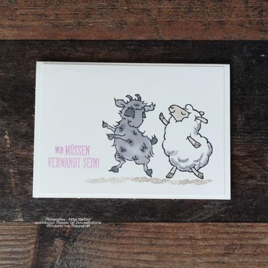 Schaf tanzt mit Ziegenbock