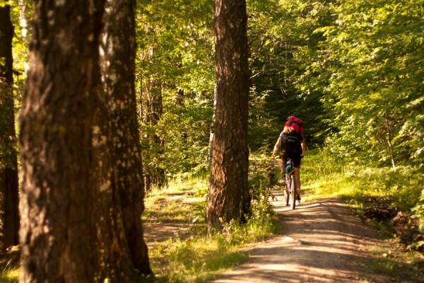 Велосипедные маршруты Подмосковья