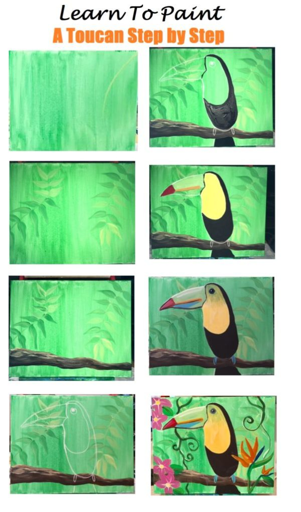 Learn How To Paint A Toucan Step By Step For Beginners
