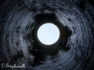 A view up the tunnel's air vent!