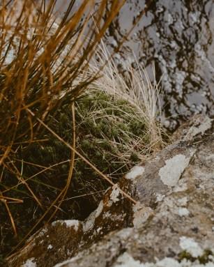 stephanie-green-wedding-photography-lake-district-patterdale-village-white-lion-old-english-pub-cumbria-16