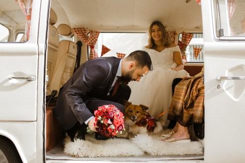 stephanie-green-weddings-marylebone-town-hall-st-pauls-cathedral-stationers-hall-dog-emma-adam-hati-buttercup-bus-vw-camper-120