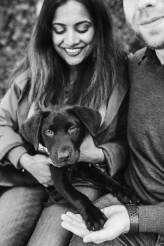 stephanie-green-weddings-puppy-portrait-ryan-jyothi-chocolate-lab-dog-pawtraits-walthamstow-london-57