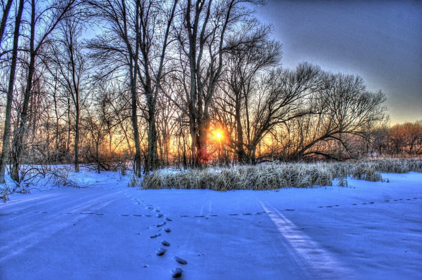 wisconsin-lake-kegonsa-state-park-footprints-in-the-snow