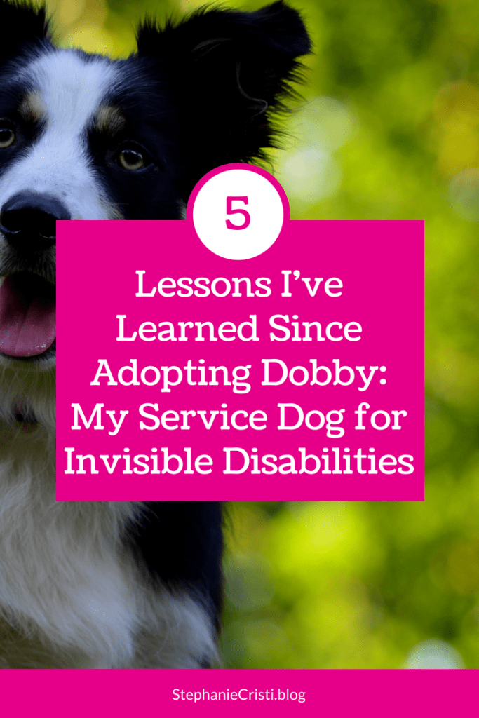 Stephanie Cristi details her experience having a service dog for invisible disabilities and the lessons she has learned in her first weeks with her dog.