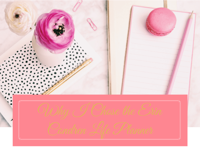 StephanieCristi discusses why she chose - and keeps choosing - the Erin Condren Life Planner year after year, as well as their cute accessories!