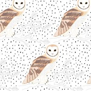 StephanieDesbenoit-poster-birds-owl-1