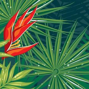 StephanieDesbenoit-poster-wildworld-rainforest-2