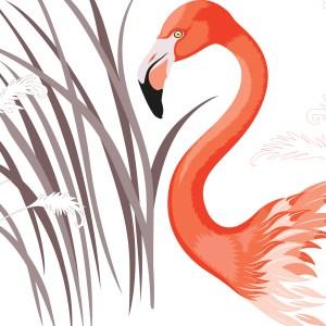 StephanieDesbenoit-wallpaper-birds-flamingo-0