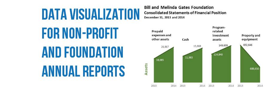 Data Visualization for Non-Profit & Foundation Annual Reports