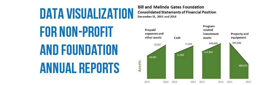 Data Visualization for Non-Profit & Foundation Annual Reports