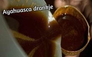 ayahuasca drankje