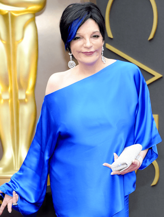 Liza Minnelli's breasts nominated for the SAG Awards