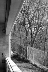 garagetree