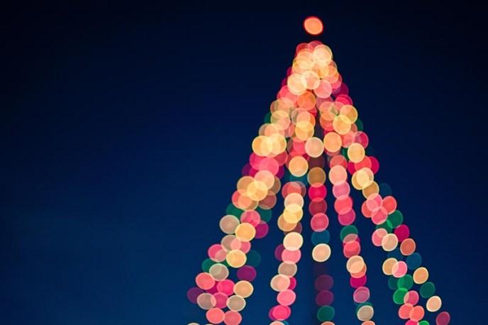 November in Portland means Christmas lights