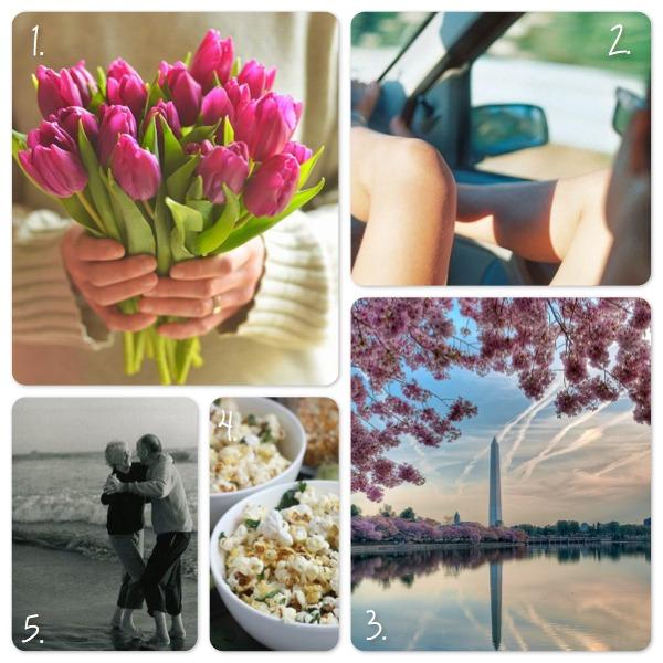 The Loveliest Things Julia Robertson