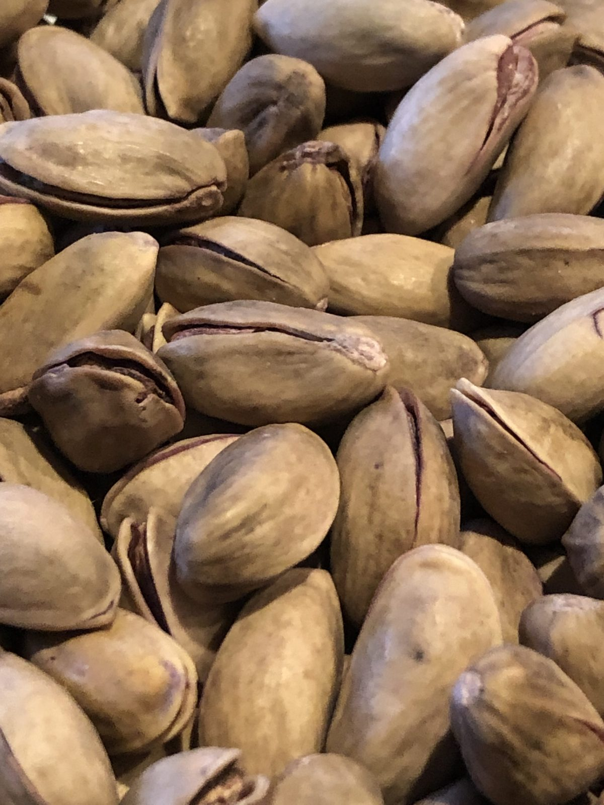 Close up photo of pistachios in the shell