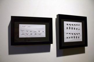 dessins-vautoursanimation