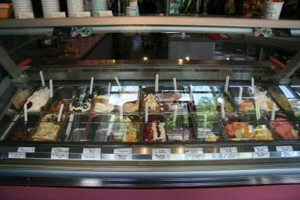 Glass display case at Humani-T displays colourful gelato creations. Photo by Andrew Belding