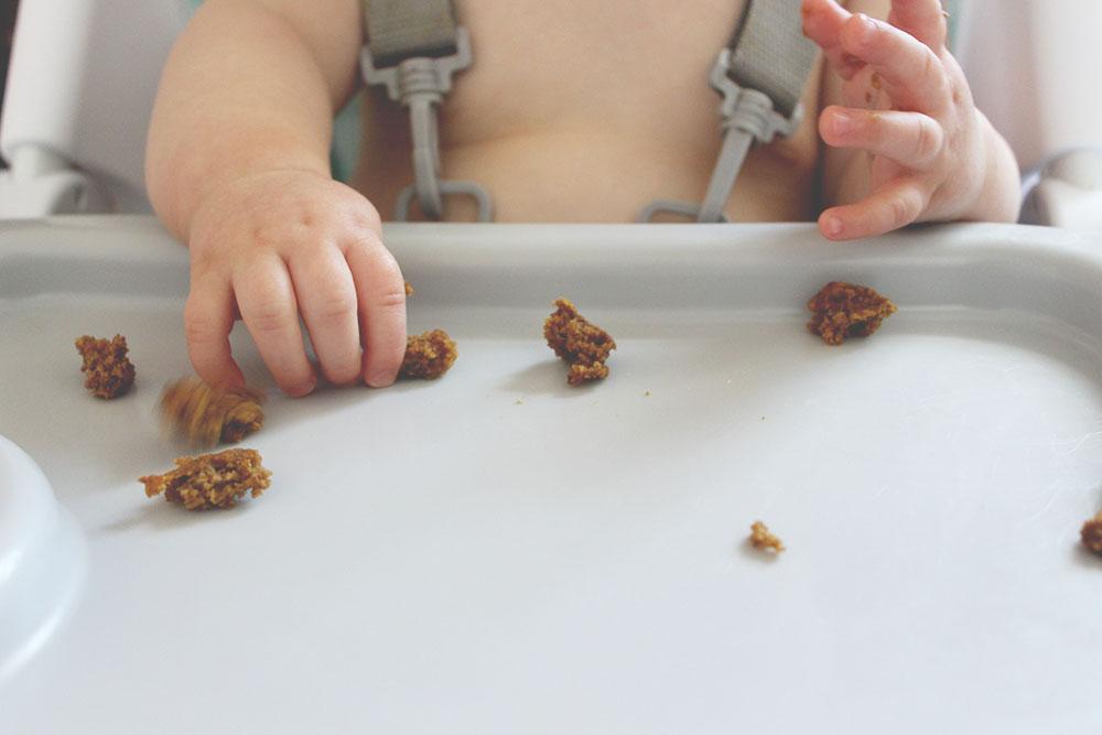 baby friendly pumpkin muffins