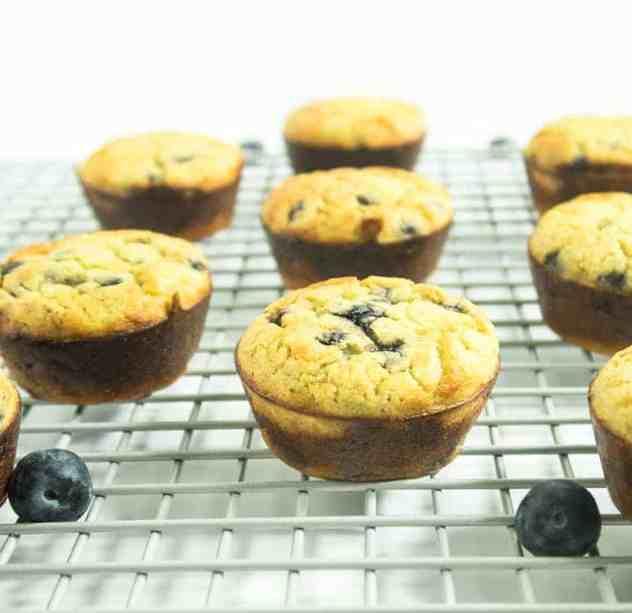 Coconut Flour Blueberry Muffins