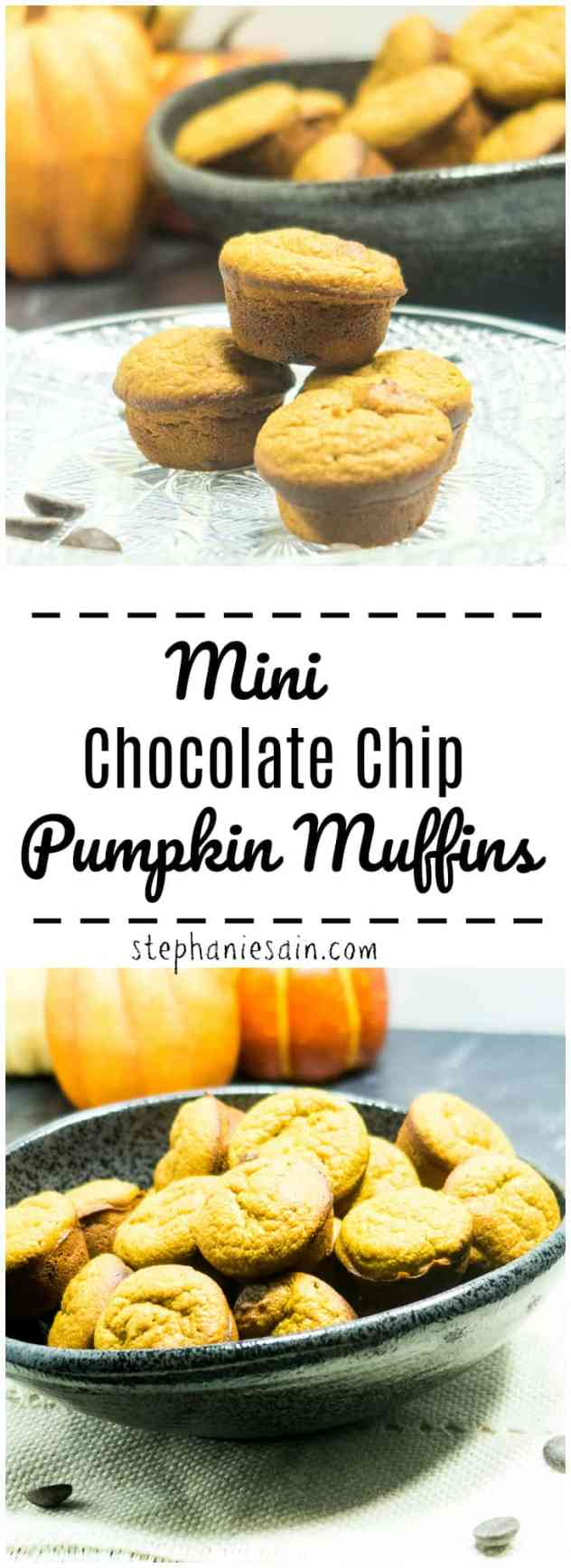 Mini Chocolate Chip Pumpkin Muffins are perfect for breakfast or snack. The perfect blend of pumpkin spice & chocolate. Made without added refined sugars, Gluten free & Vegetarian.