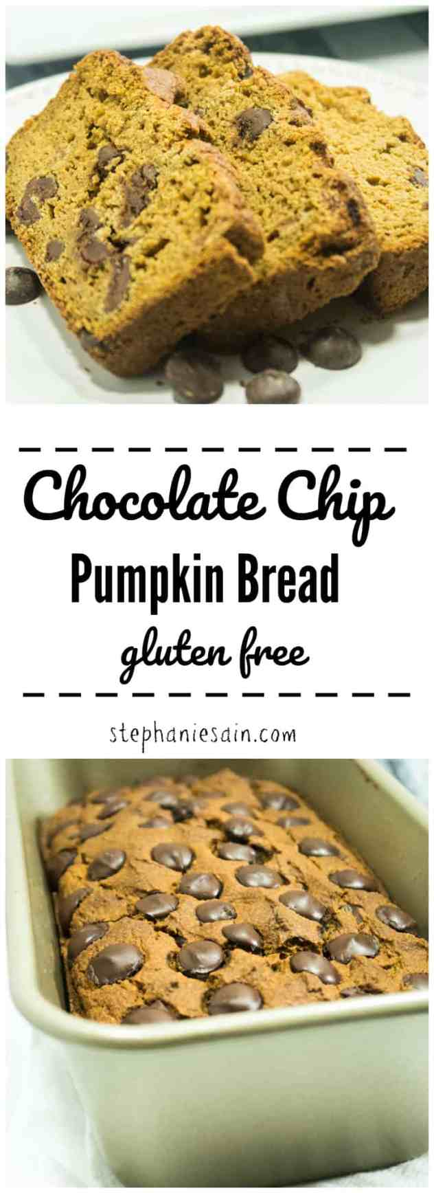This Chocolate Chip Pumpkin Bread is Super moist, loaded with dark chocolate chips, & pumpkin spices. Perfect for a quick breakfast or snack. Kid friendly, no added refined sugars, & gluten free.