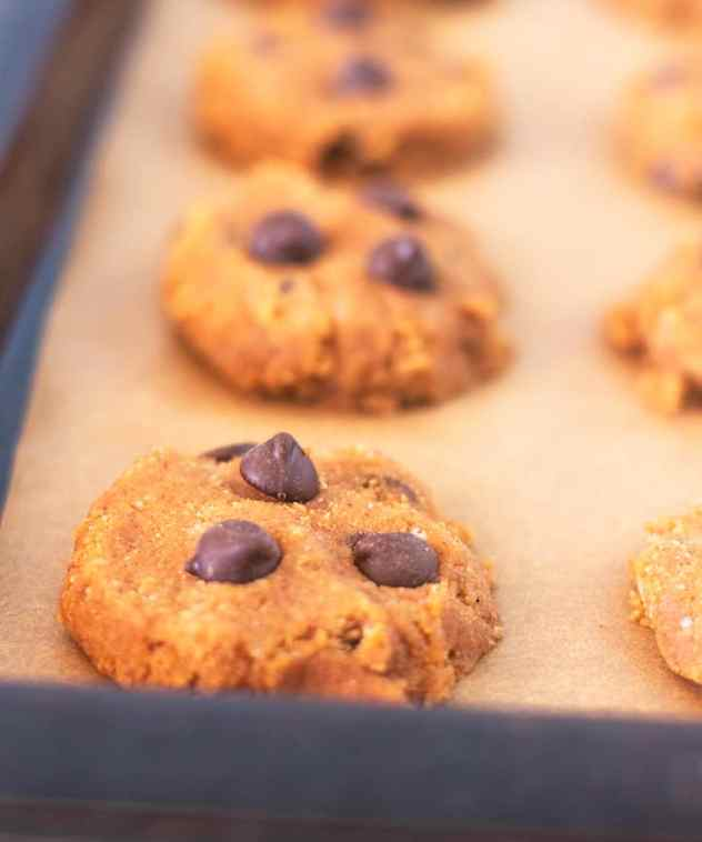 Pumpkin Chocolate Chip cookies on baking sheet prior to cooking.