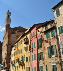 Houses rising their contrada's flags