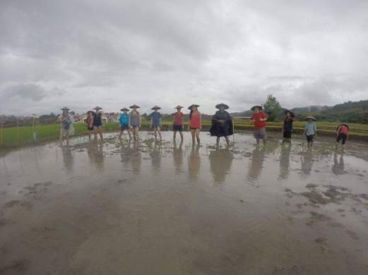 laos-livinglandfarm-10