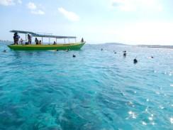 gili air snorkeling (1)